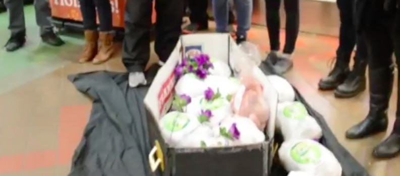 Animal Rights Snowflakes Hold Funerals for Frozen Turkeys in Stores