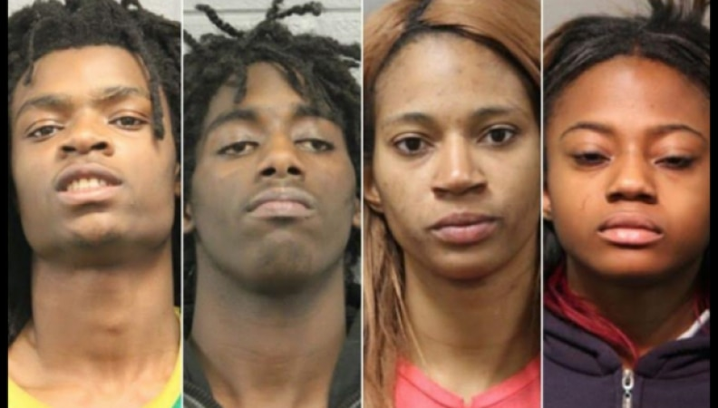 Chicago Torture Punks – Do They Deserve the Zoo Instead of Jail?